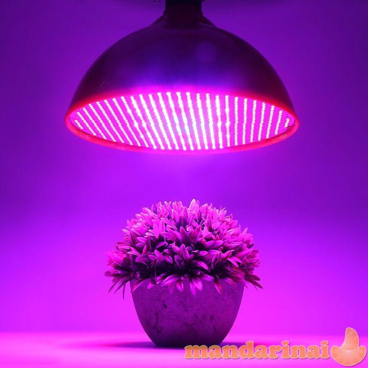 500Led pilno spektro 60W lempa augalų  auginimui patalpose