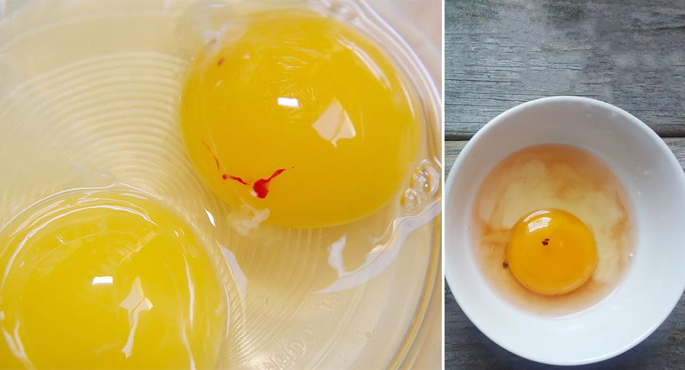 7.99 € OVOSKOPAS kiaušinių kokybei tikrinti